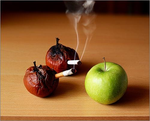 Курящие сморщенные яблоки и зелёное здоровое